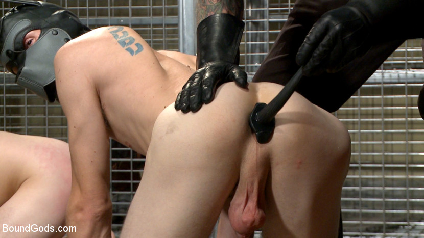 Rocco Steele and Tryp Bates