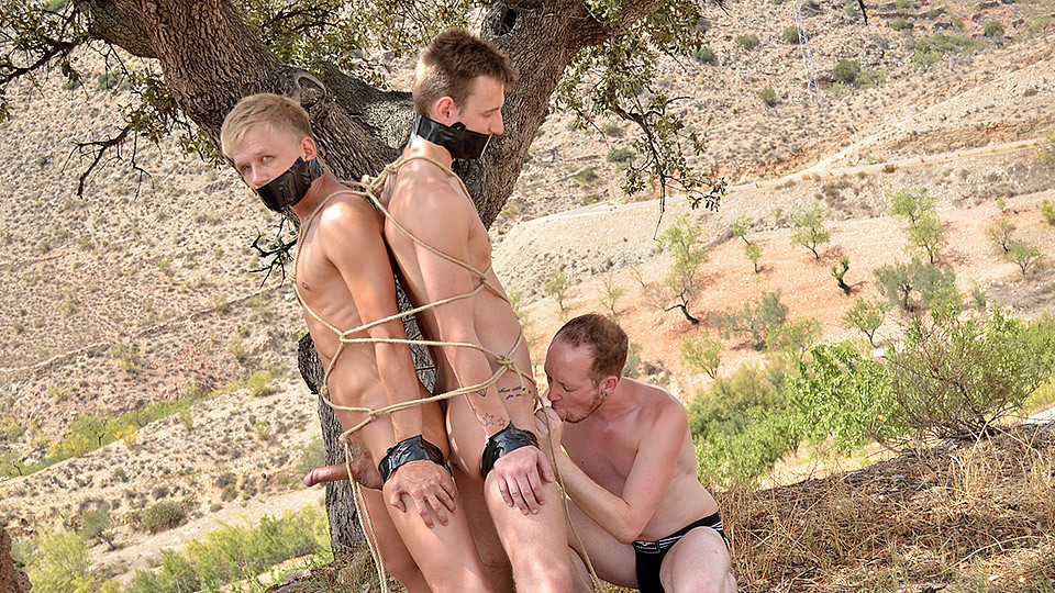 2 Young Captive Cocks To Use: Chris Jansen, Reece Bentley and Sean Taylor