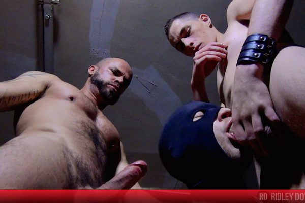 A hard DP lesson for Greg Ken's hole