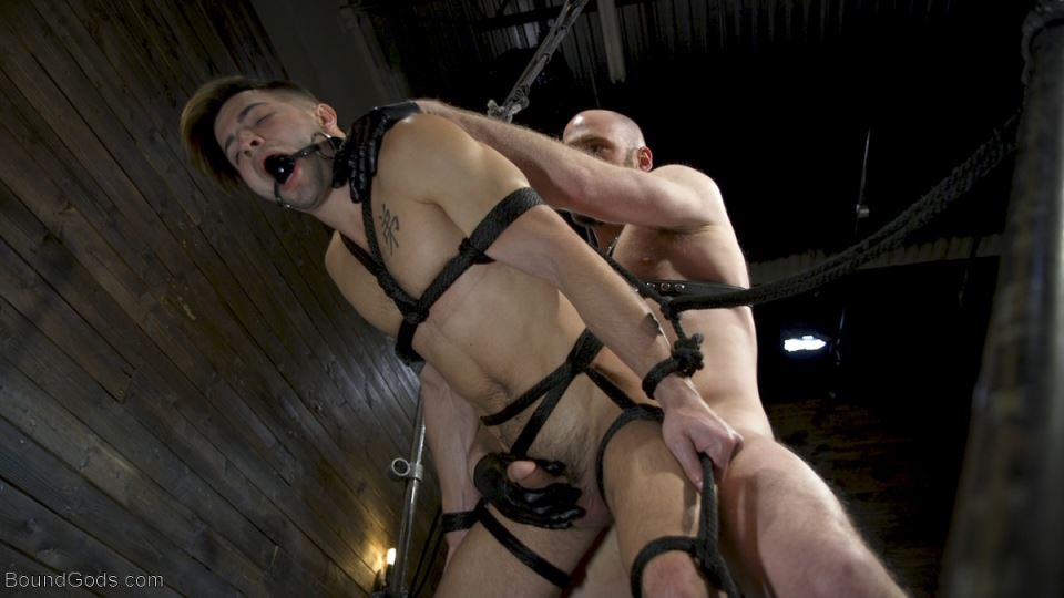 Master Samson and Casey (Pictures) 10