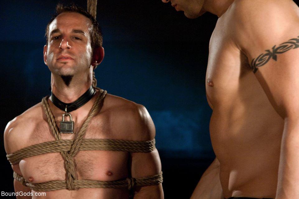 Downsizing: A Gay BDSM Orgy