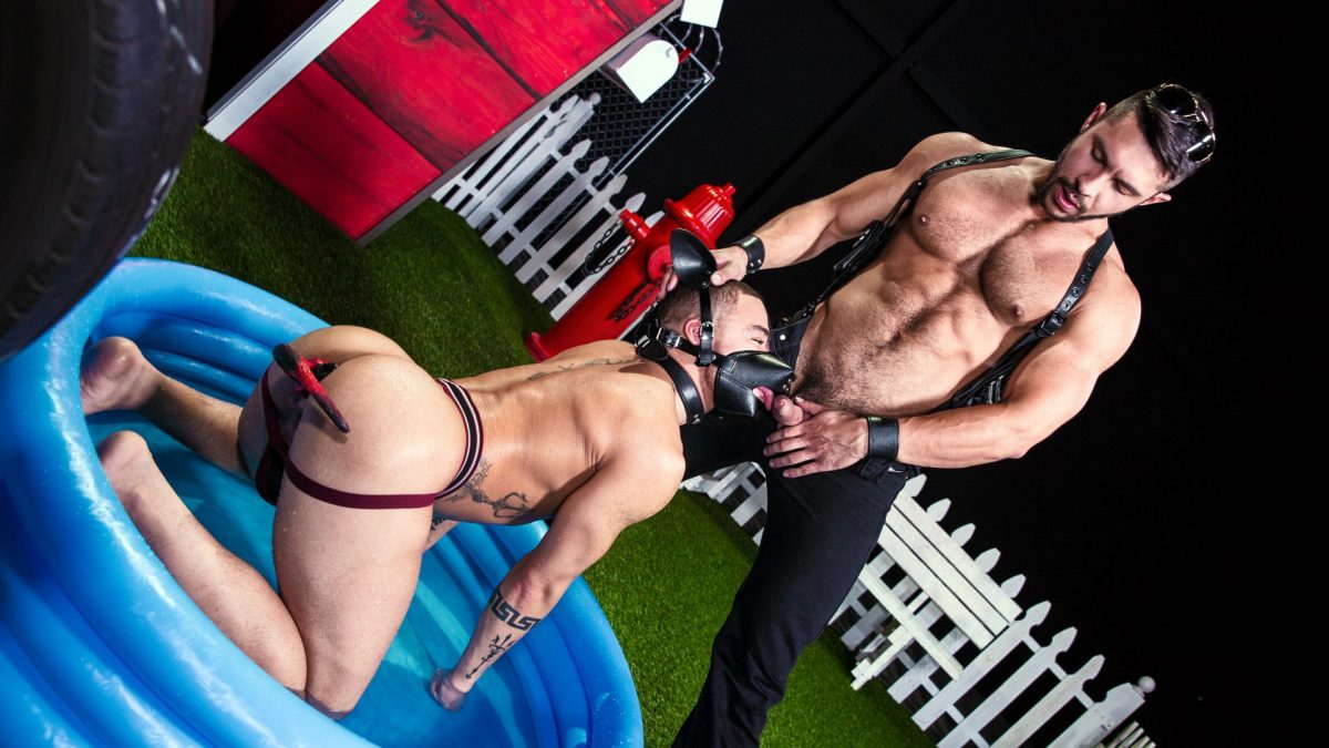 Seth Santoro as the master and Beaux Banks as the puppy